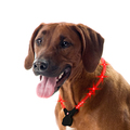 Wolters - Hundehalsband - Nightshift Leuchthalsband rot 50-60cm